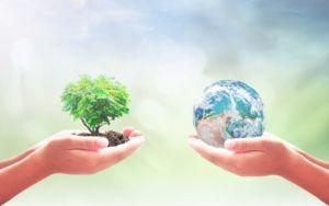 servizi ambientali - consulenza